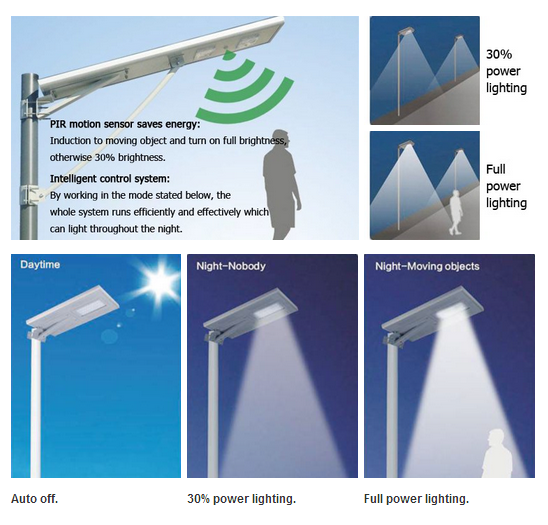 integrated solar street light1