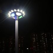 solar powered garden lights (6)