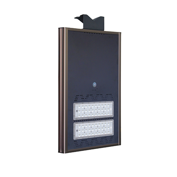 solar street lights wiht 30 watt led (1)